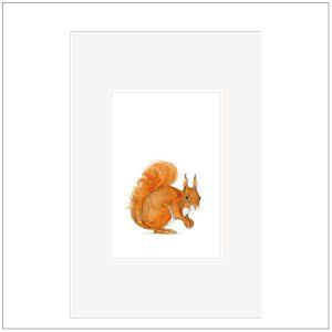 Prent - baby diertjes eekhoorn - babykamer