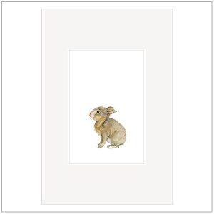 Prent - baby diertjes konijn - babykamer