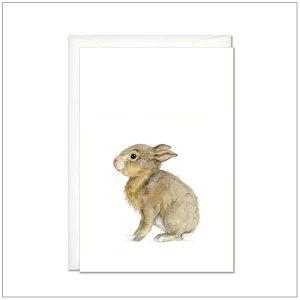 Kaart versturen - postcard - baby konijn